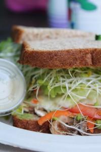 Andy's Sandwich Manoa Delightw